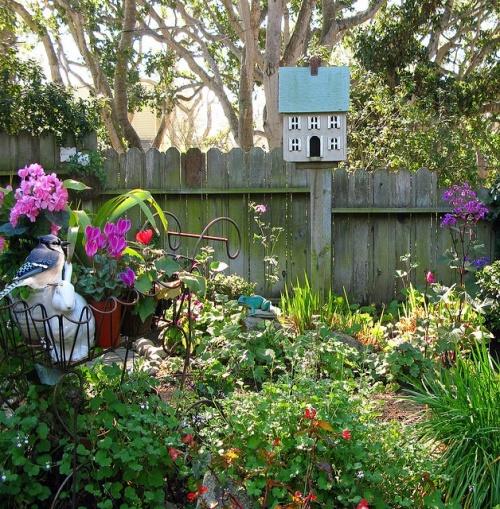 A similar garden