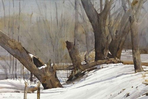 Winter Trees by Dean Mitchell