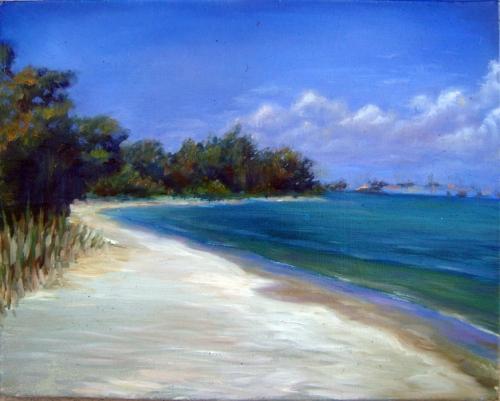 Sarasota Bay by Tom D'Auria